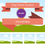 dog hair dryer review