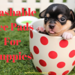 washable pee pads for puppies