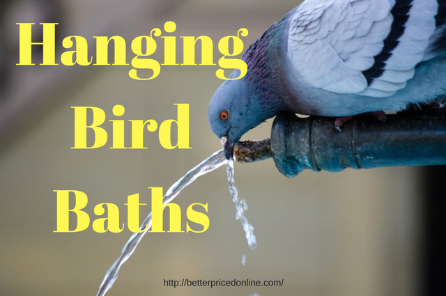 hanging bird bath and water feeder reviews