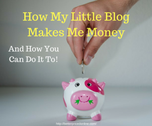 How my blog makes money