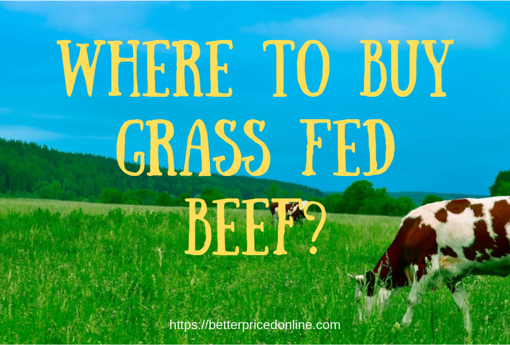 Best Places To Buy Grass Fed Beef