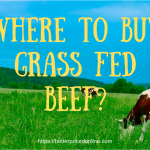whre to buy grass fed beef