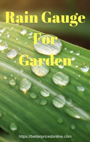 Rain Gauge For Garden