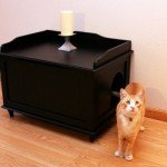 designer cat container enclosed in black review